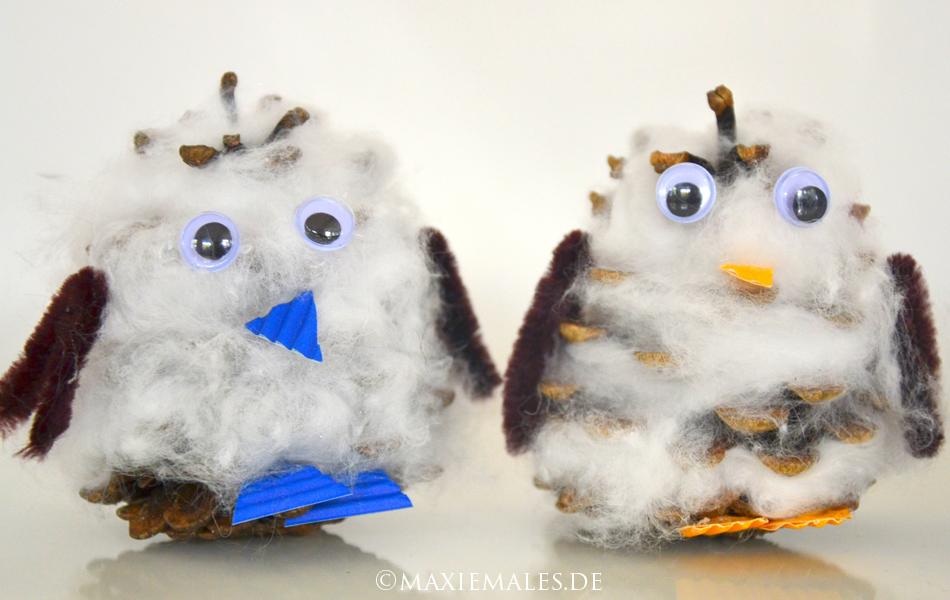 Schnee eule selbstgemacht basteln mit kindern for Mit tannenzapfen basteln